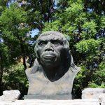 北京原人化石消失事件